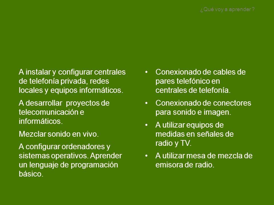 A desarrollar proyectos de telecomunicación e informáticos.