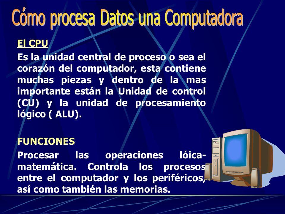 Cómo procesa Datos una Computadora