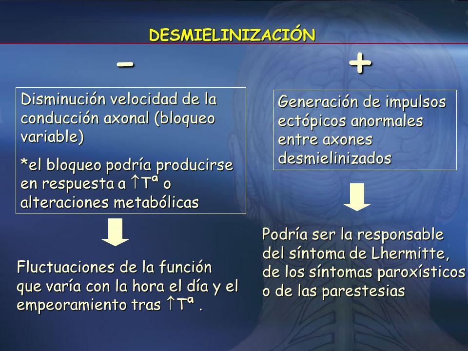 DESMIELINIZACIÓN - + Disminución velocidad de la conducción axonal (bloqueo variable)