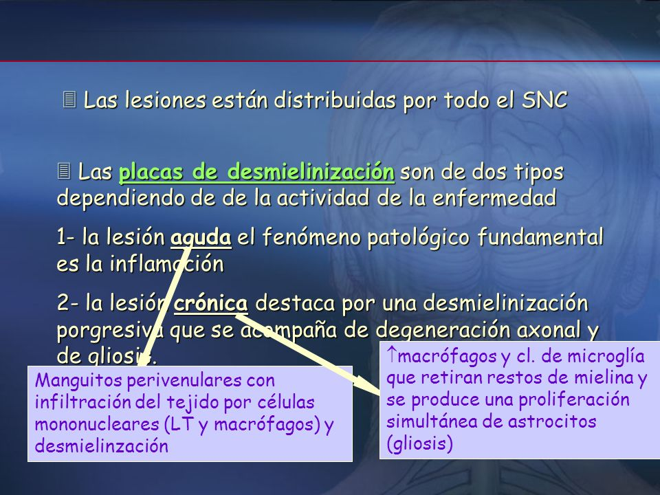  Las lesiones están distribuidas por todo el SNC