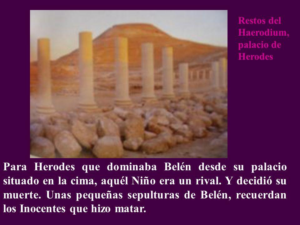 Restos del Haerodium, palacio de Herodes
