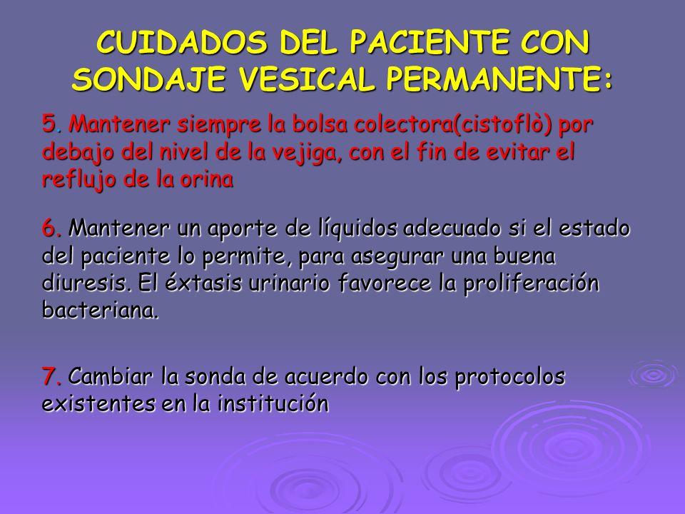 CUIDADOS DEL PACIENTE CON SONDAJE VESICAL PERMANENTE: