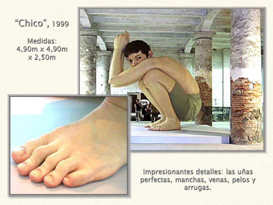 Chico , 1999 Medidas: 4,90m x 4,90m x 2,50m