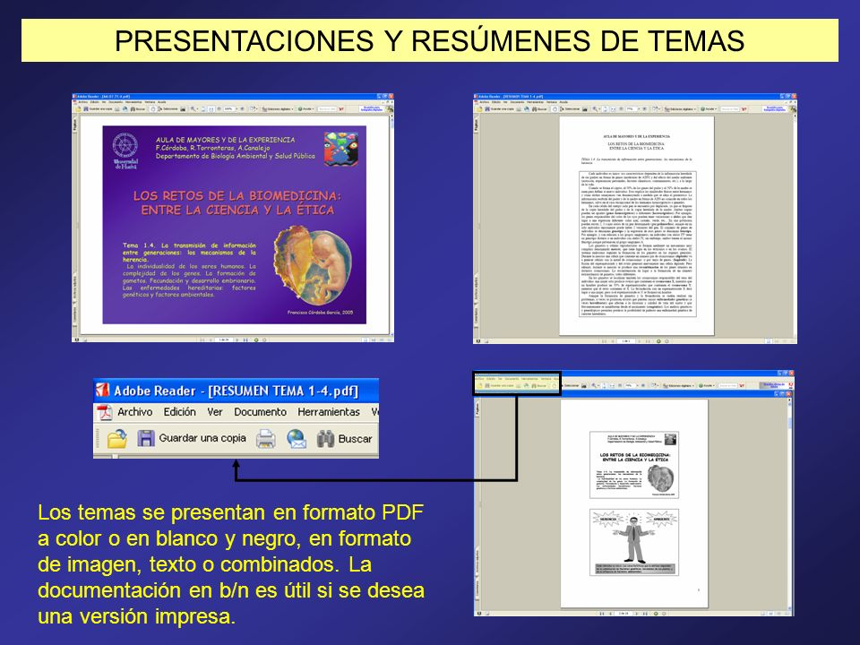 PRESENTACIONES Y RESÚMENES DE TEMAS
