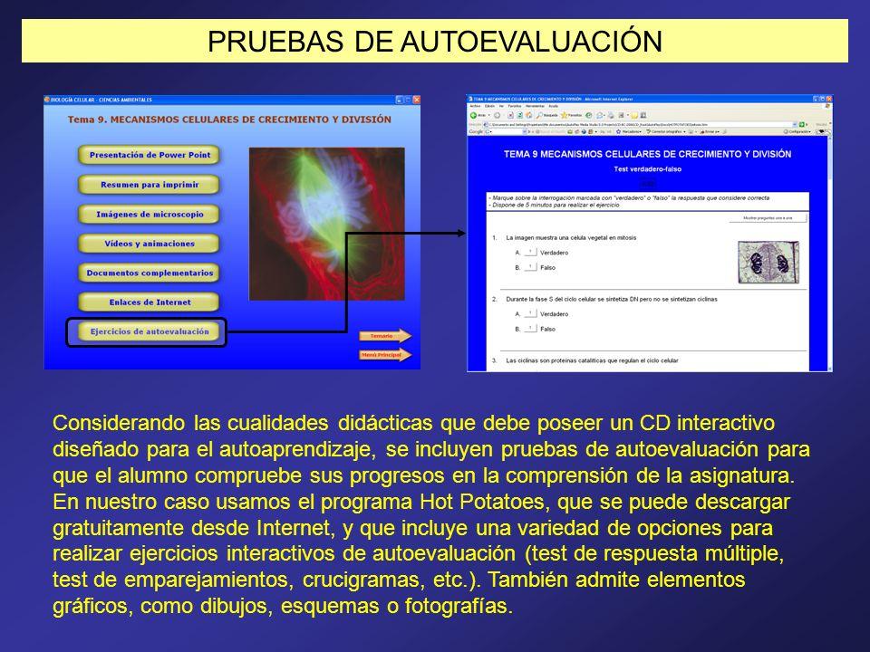 PRUEBAS DE AUTOEVALUACIÓN