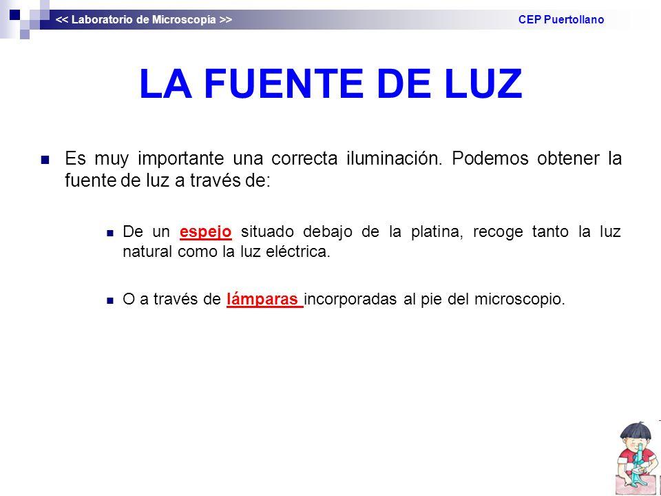 << Laboratorio de Microscopía >> CEP Puertollano