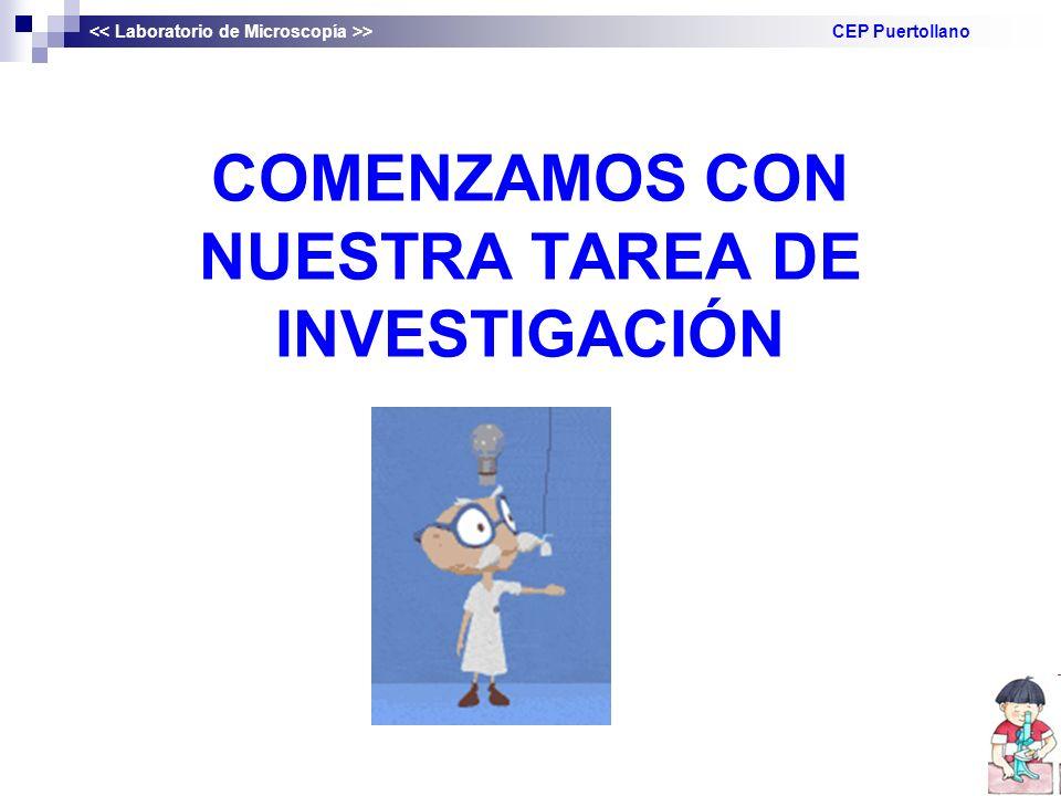 COMENZAMOS CON NUESTRA TAREA DE INVESTIGACIÓN
