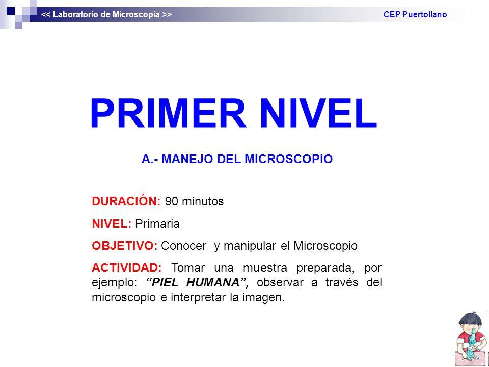 PRIMER NIVEL A.- MANEJO DEL MICROSCOPIO DURACIÓN: 90 minutos