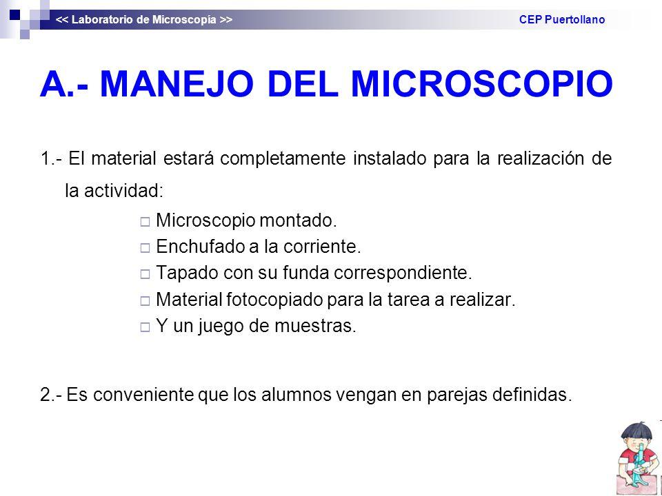 A.- MANEJO DEL MICROSCOPIO