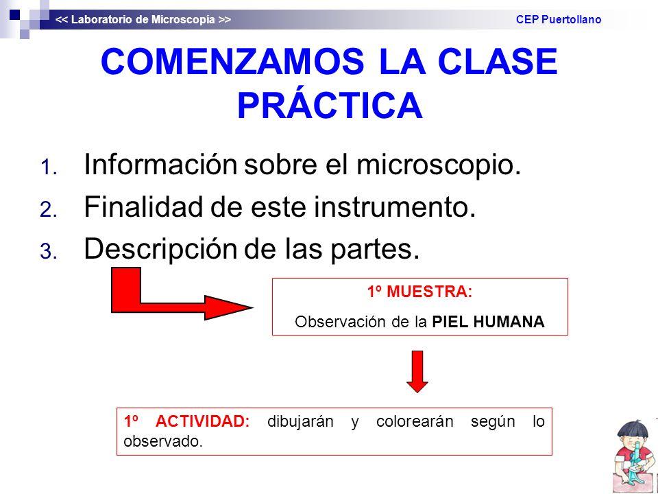 COMENZAMOS LA CLASE PRÁCTICA