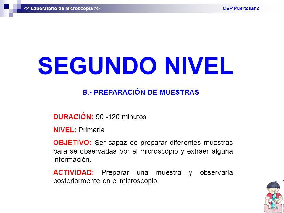 SEGUNDO NIVEL B.- PREPARACIÓN DE MUESTRAS DURACIÓN: 90 -120 minutos