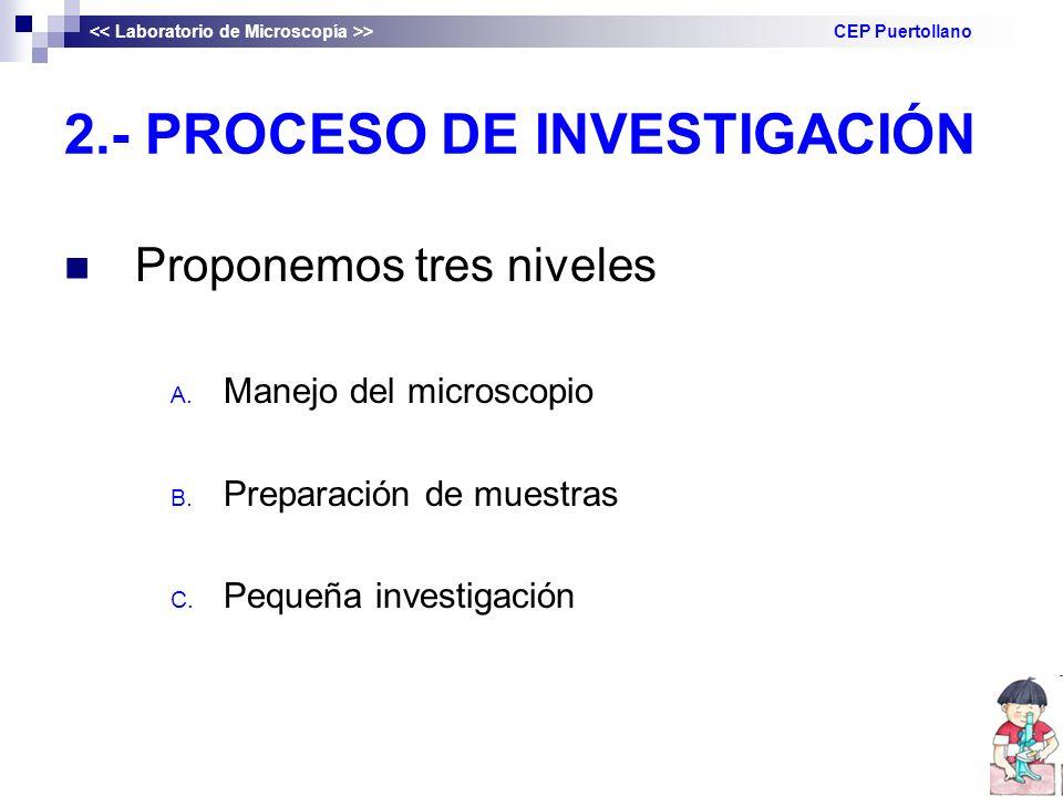 2.- PROCESO DE INVESTIGACIÓN