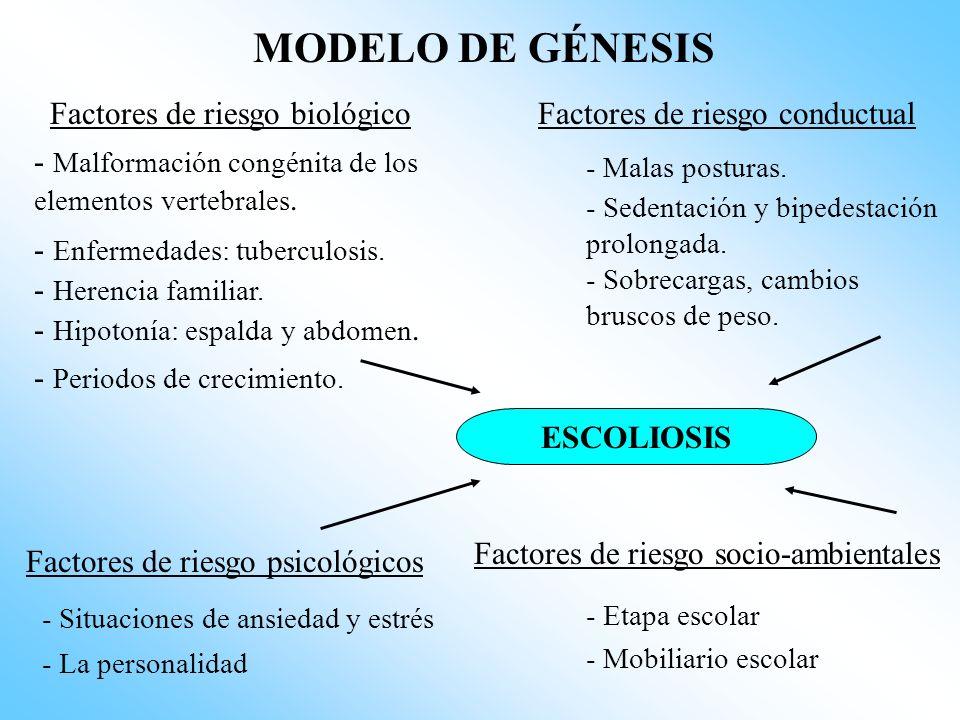 MODELO DE GÉNESIS Factores de riesgo biológico