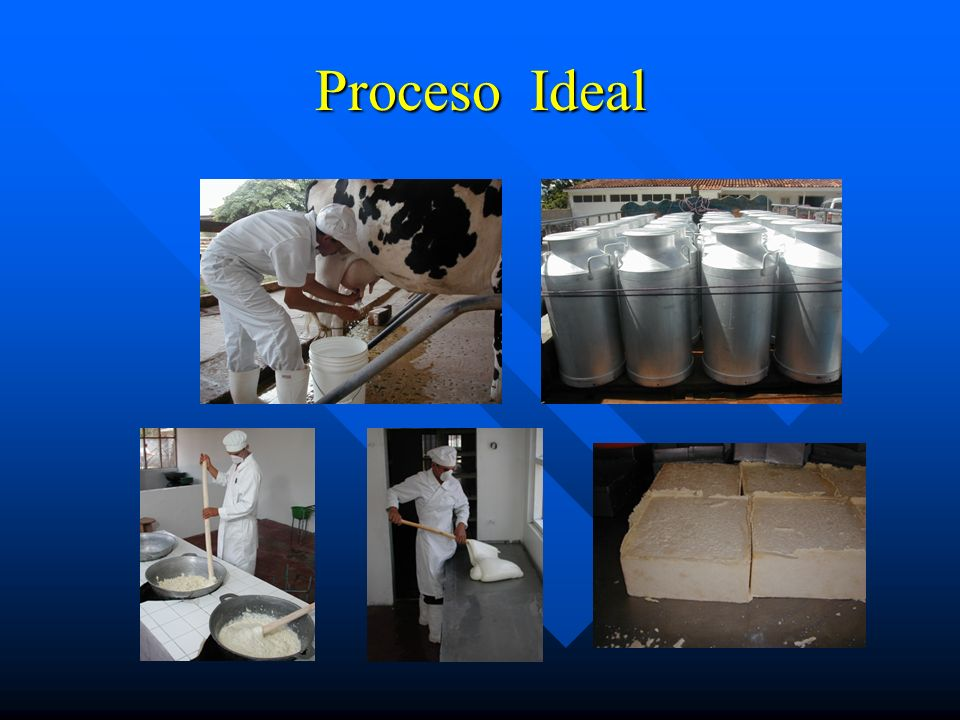 Proceso Ideal