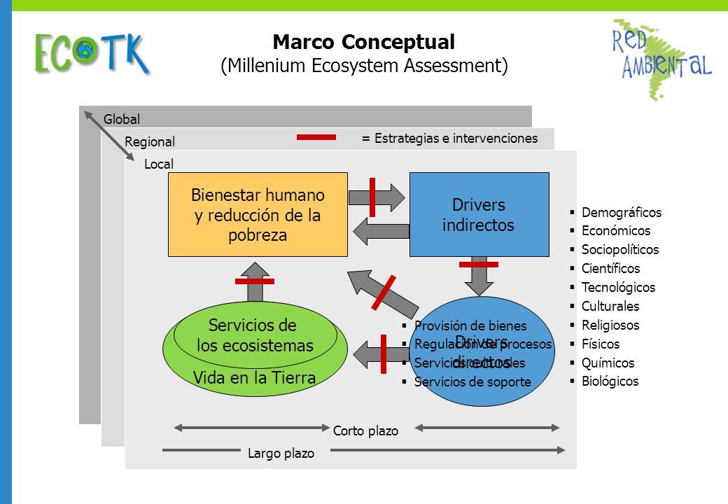 Marco Conceptual (Millenium Ecosystem Assessment)