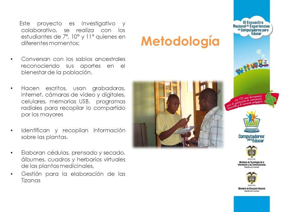 Metodología Este proyecto es investigativo y colaborativo, se realiza con los estudiantes de 7º, 10° y 11° quienes en diferentes momentos: