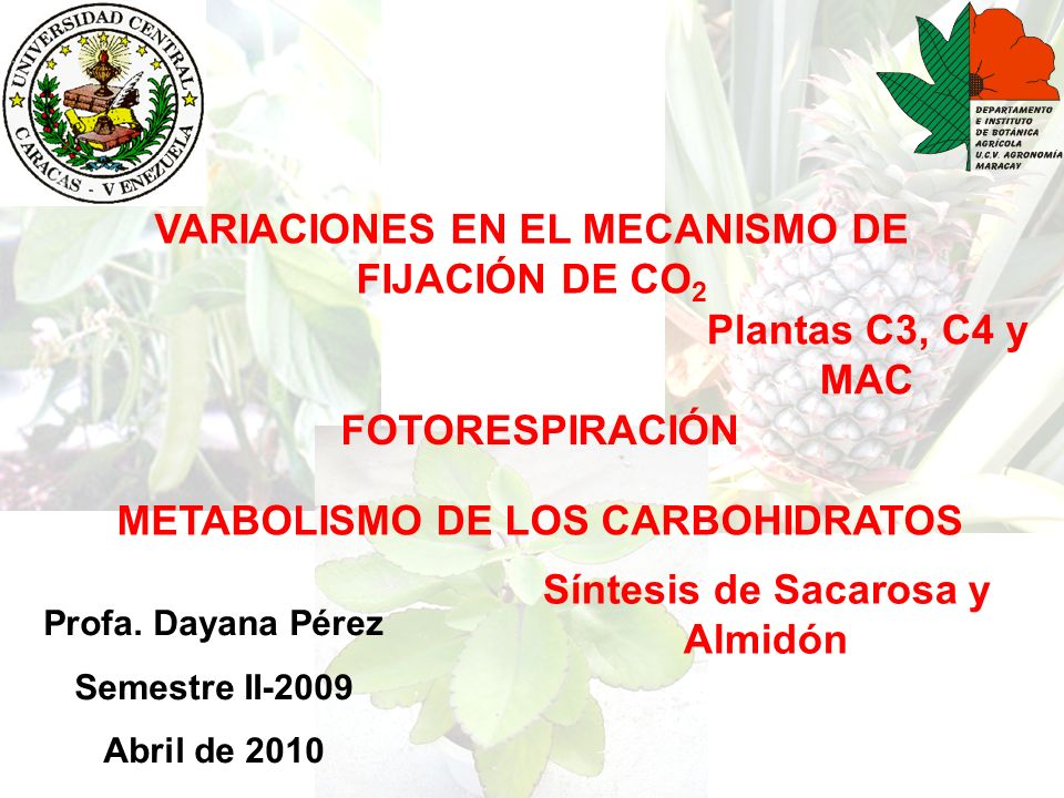 VARIACIONES EN EL MECANISMO DE FIJACIÓN DE CO2