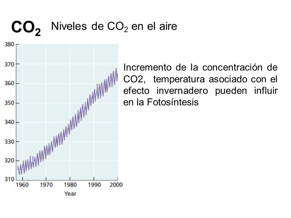 CO2 Niveles de CO2 en el aire