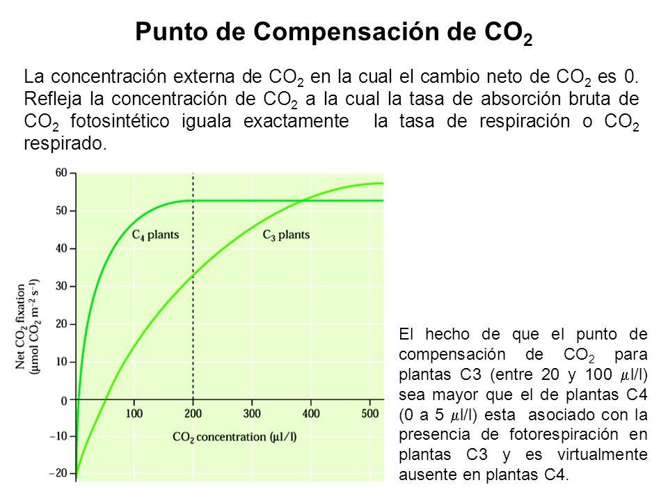 Punto de Compensación de CO2