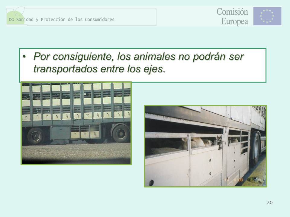 Por consiguiente, los animales no podrán ser transportados entre los ejes.