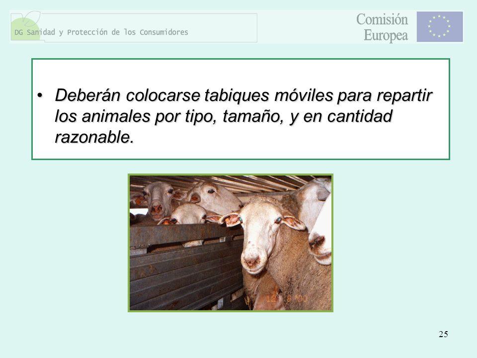 Deberán colocarse tabiques móviles para repartir los animales por tipo, tamaño, y en cantidad razonable.