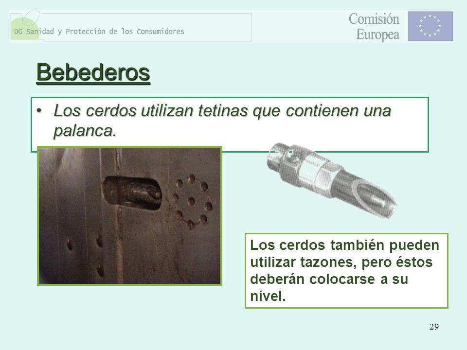 Bebederos Los cerdos utilizan tetinas que contienen una palanca.