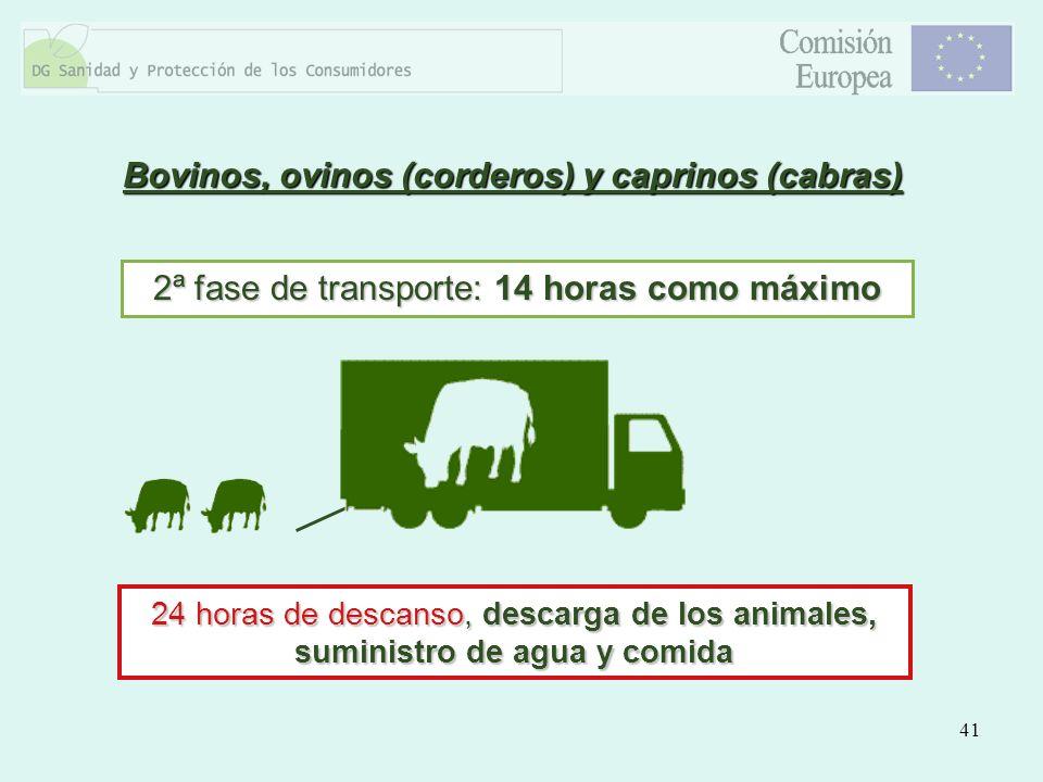 Bovinos, ovinos (corderos) y caprinos (cabras)