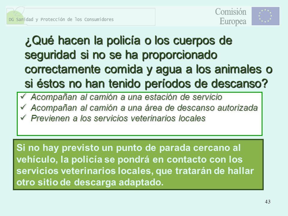 ¿Qué hacen la policía o los cuerpos de seguridad si no se ha proporcionado correctamente comida y agua a los animales o si éstos no han tenido períodos de descanso