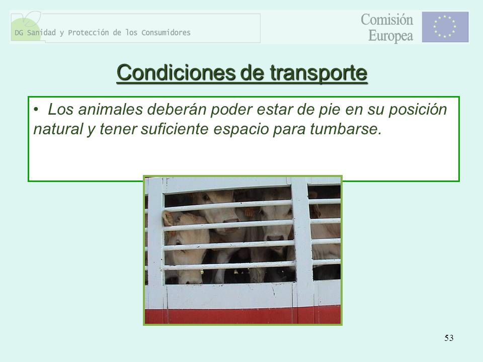 Condiciones de transporte