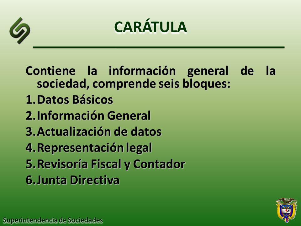 CARÁTULA Contiene la información general de la sociedad, comprende seis bloques: Datos Básicos. Información General.