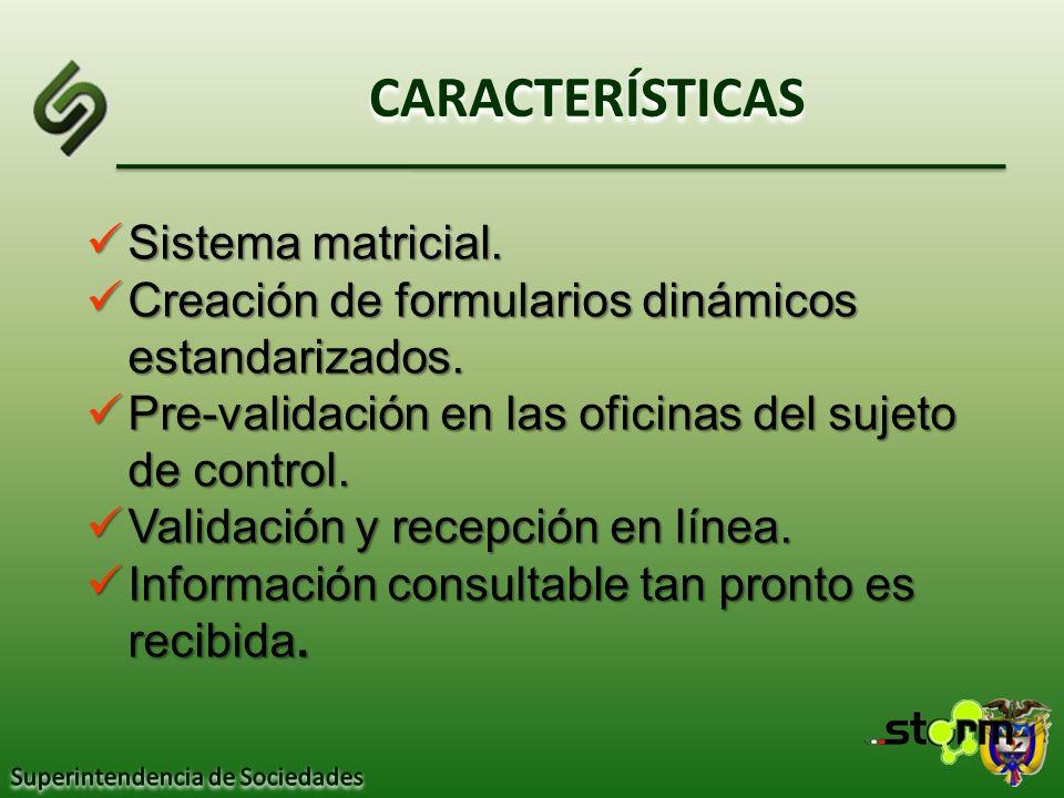 CARACTERÍSTICAS Sistema matricial.