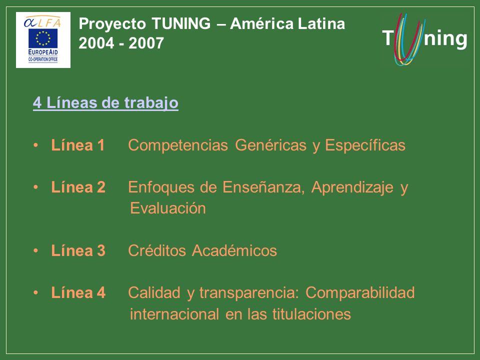 Proyecto TUNING – América Latina 2004 - 2007