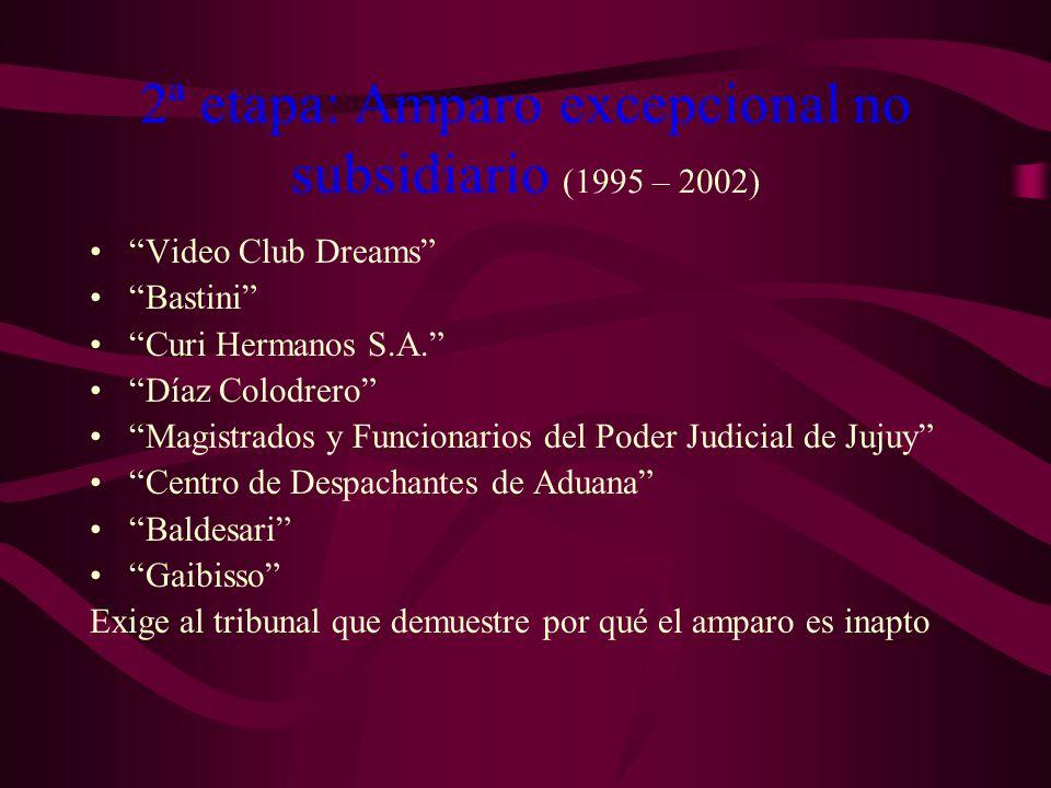 2ª etapa: Amparo excepcional no subsidiario (1995 – 2002)