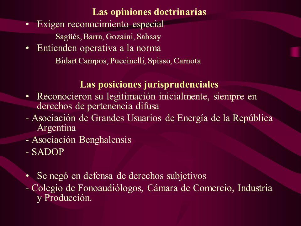 Las opiniones doctrinarias. Exigen reconocimiento especial