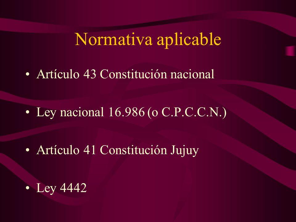 Normativa aplicable Artículo 43 Constitución nacional