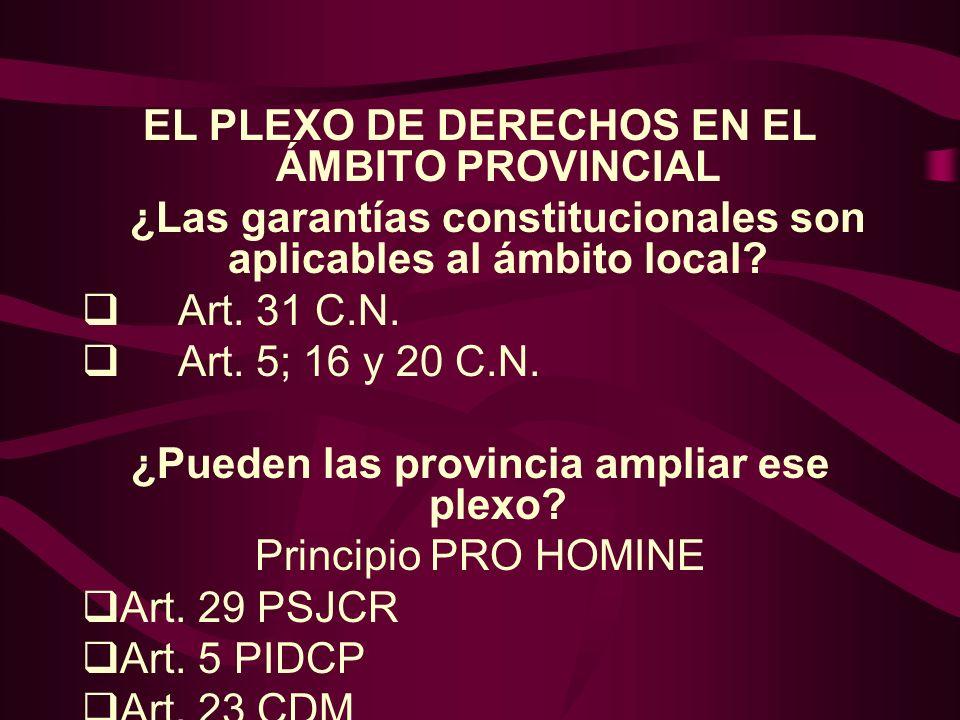 EL PLEXO DE DERECHOS EN EL ÁMBITO PROVINCIAL