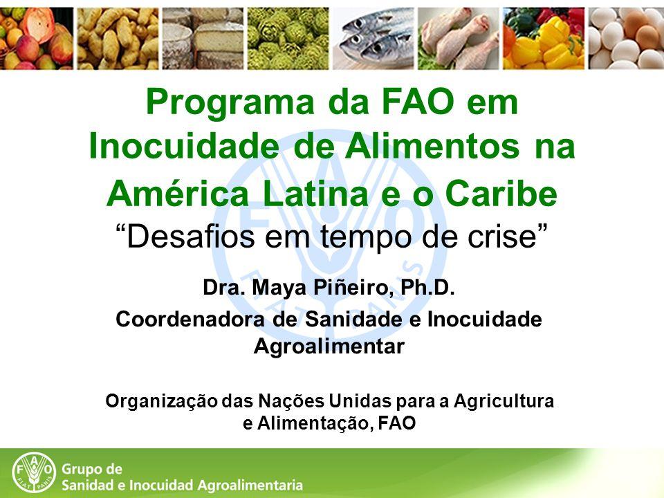 Programa da FAO em Inocuidade de Alimentos na América Latina e o Caribe