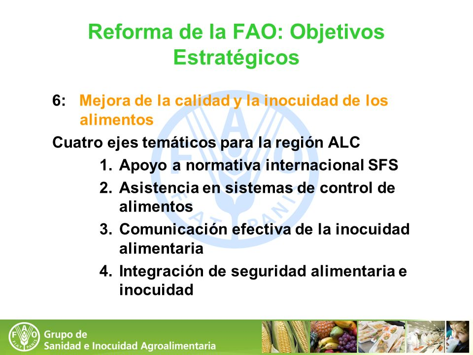 Reforma de la FAO: Objetivos Estratégicos