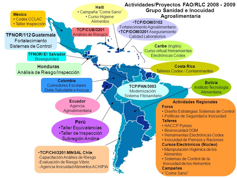 Actividades/Proyectos FAO/RLC 2008 - 2009 Grupo Sanidad e Inocuidad