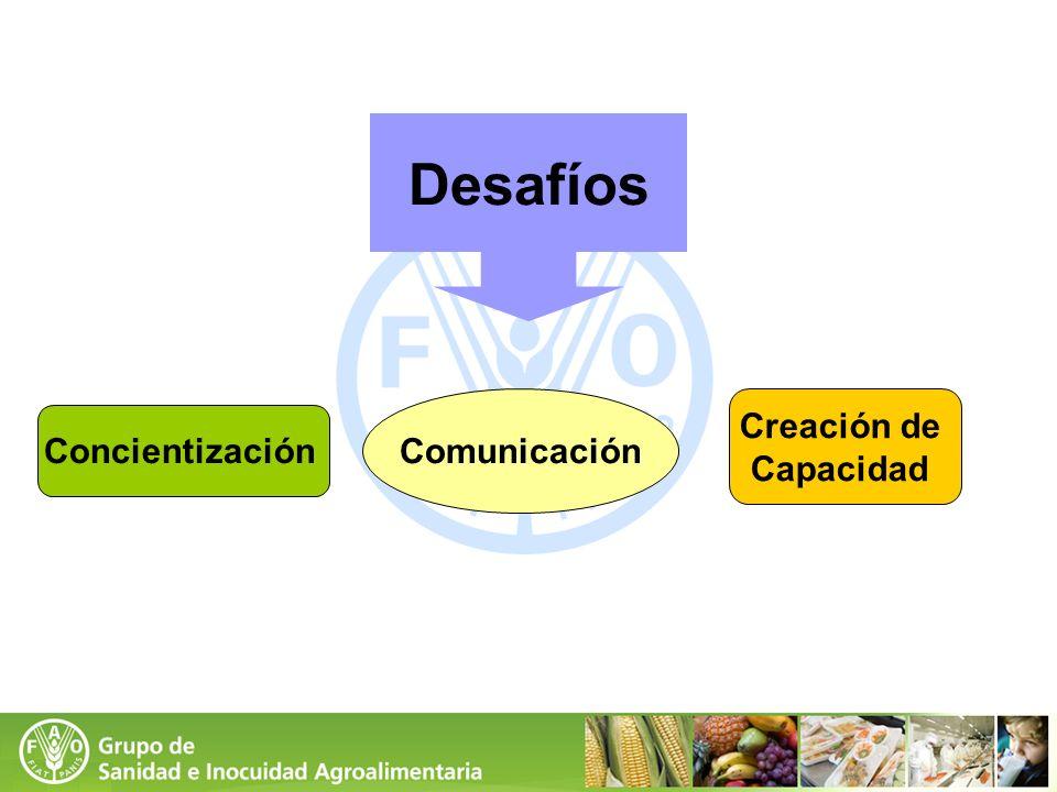 Desafíos Comunicación Creación de Capacidad Concientización