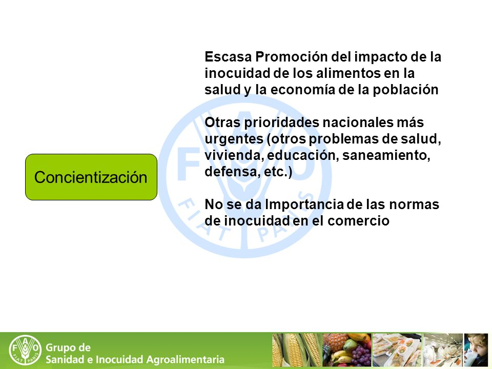 Escasa Promoción del impacto de la inocuidad de los alimentos en la salud y la economía de la población