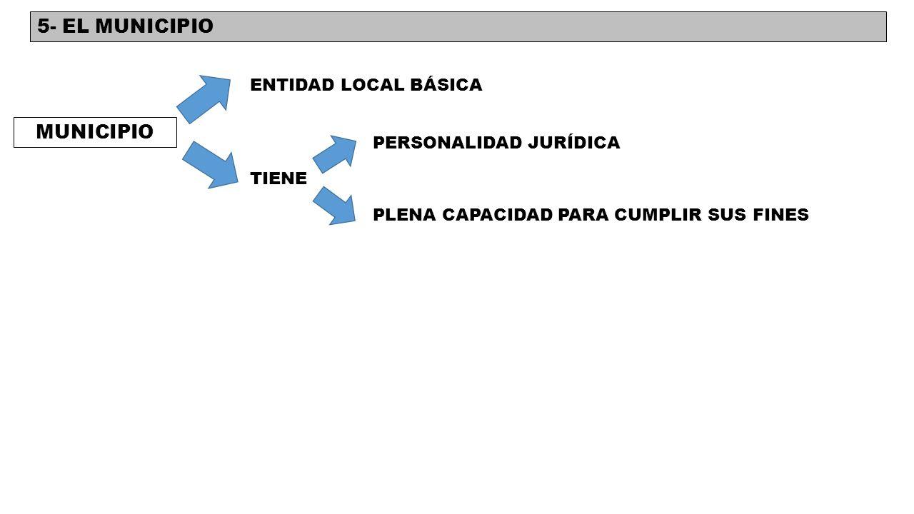 5- EL MUNICIPIO MUNICIPIO ENTIDAD LOCAL BÁSICA PERSONALIDAD JURÍDICA