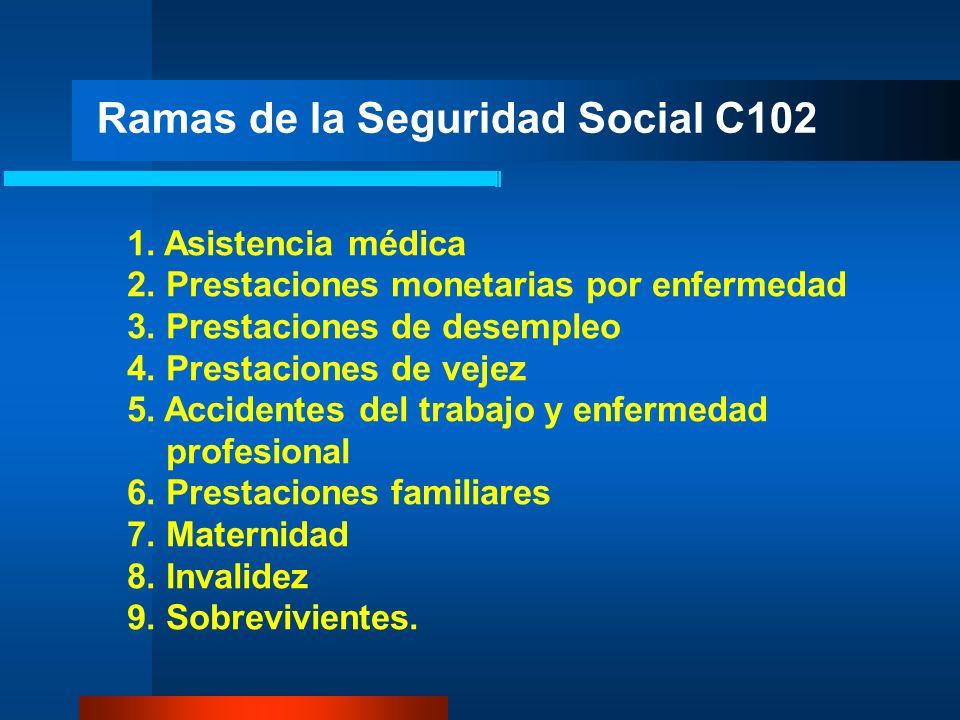 Ramas de la Seguridad Social C102