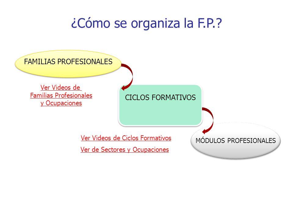 ¿Cómo se organiza la F.P. FAMILIAS PROFESIONALES CICLOS FORMATIVOS