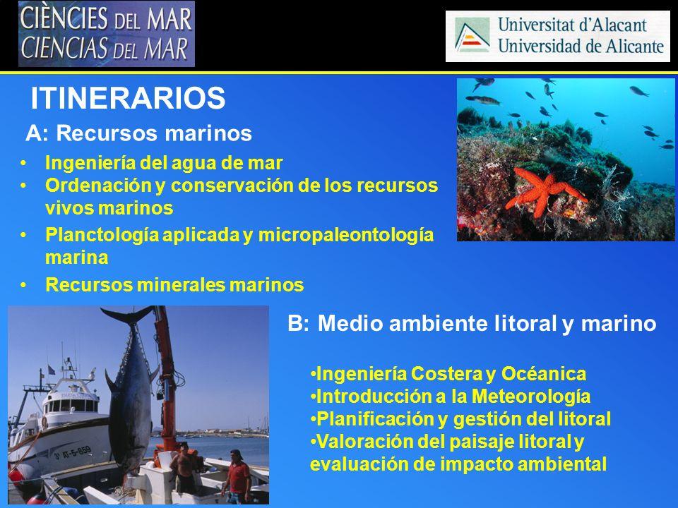 ITINERARIOS A: Recursos marinos B: Medio ambiente litoral y marino