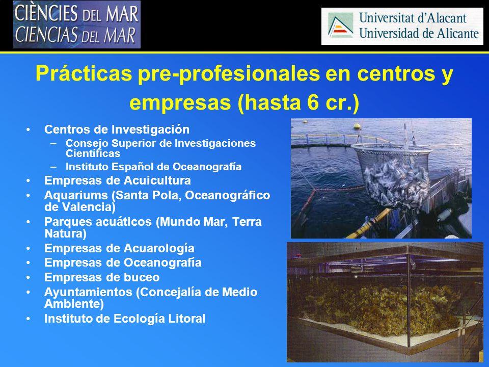 Prácticas pre-profesionales en centros y empresas (hasta 6 cr.)
