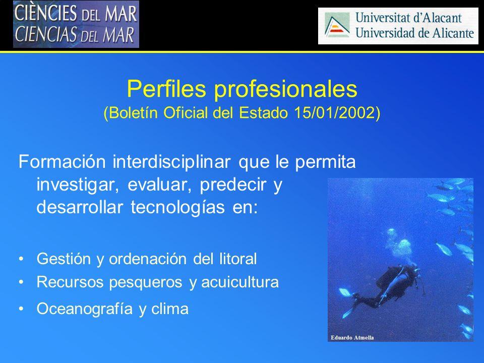 Perfiles profesionales (Boletín Oficial del Estado 15/01/2002)