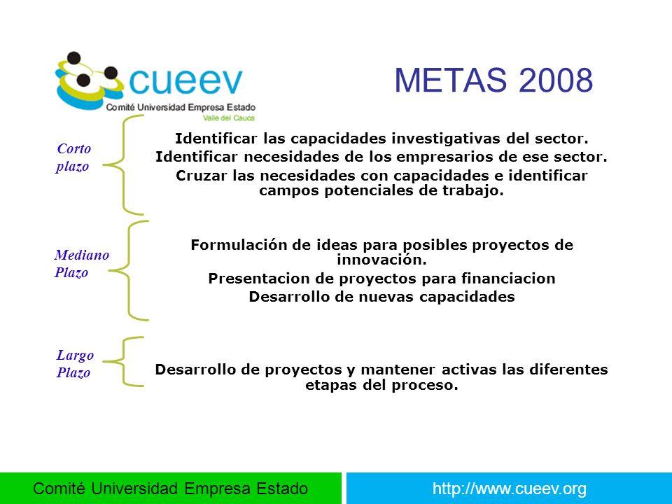 METAS 2008 Corto plazo Mediano Plazo Largo Plazo
