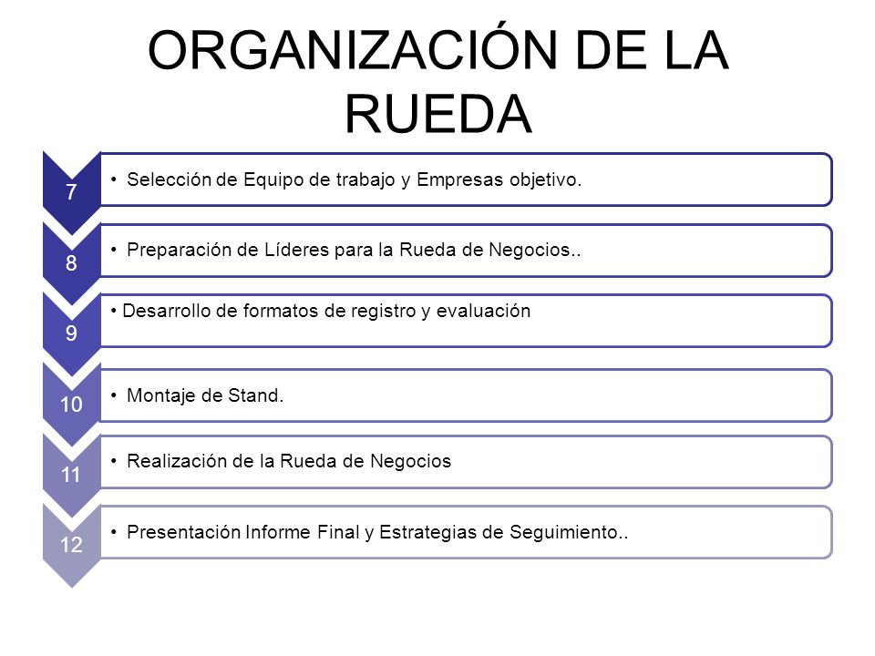 ORGANIZACIÓN DE LA RUEDA