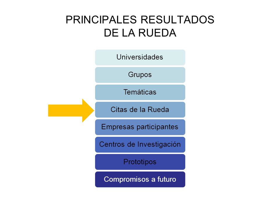 PRINCIPALES RESULTADOS DE LA RUEDA